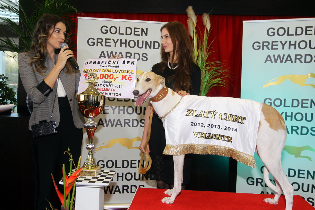 https://www.greyhoundpark.cz/User_Data/vsamotol/images/Greyhound_Park_Motol_Golden_Greyhound_Awards_Chrti_Oskari_PANK2368_resize.jpg