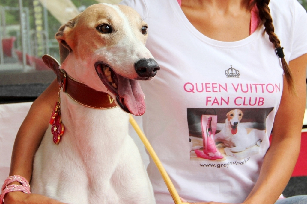 QUEEN VUITTON FAN CLUB