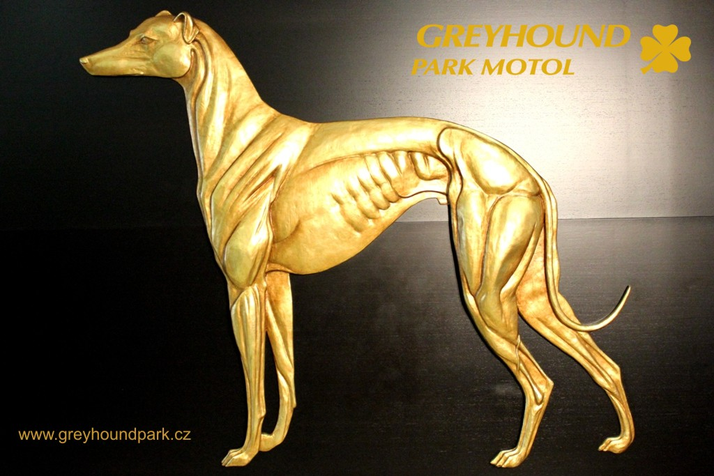 Zlatý chrt 2015 - Chrtí Oskaři - Golden Greyhound Awards